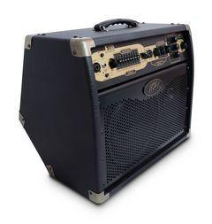"PEAVEY Akustikcombo Ecoustic E110, 100 Watt, 1x10""+Tweeter,"