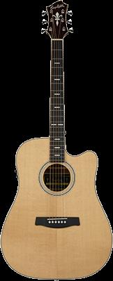 HAGSTROM Dalarna II E/Acoustic Body: Palisander Dreadnought