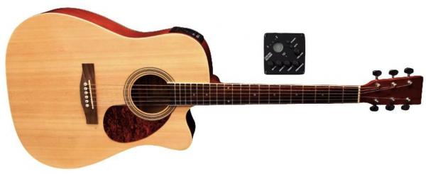 VGS D-10CE Westerngitarre mit Tonabnehmer Natur