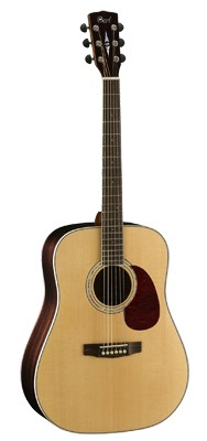 CORT Earth 100RW Dreadnought
