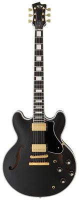 FGN Masterfield Semiakustik-Gitarre