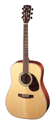 CORT Earth 100 Dreadnought