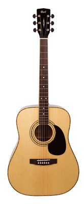 CORT AD880 Dreadnought
